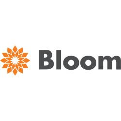 Bloom Insurance
